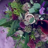 Aimie blog 5